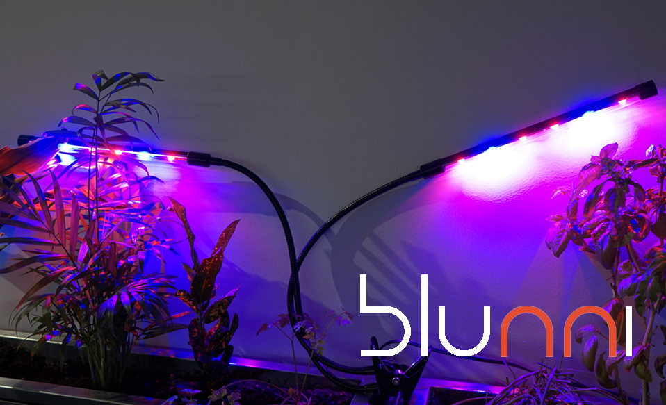 lampara plantas cocina