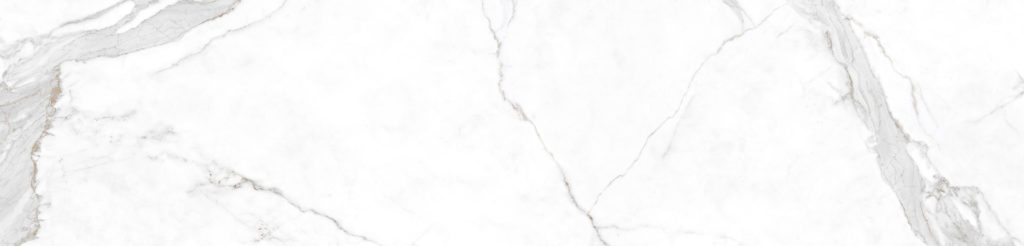 estatuario-e01r-1024x246